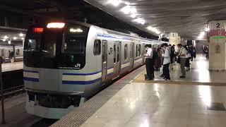 E217系クラY-33編成+クラY-113編成東京発車