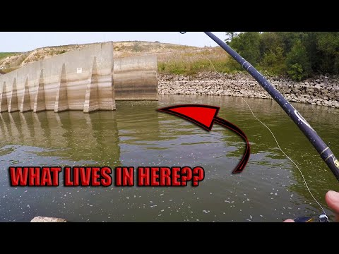 Fishing A Tiny Spillway For White Bass