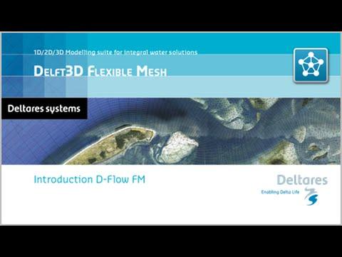 Introduction D-Flow Flexible Mesh