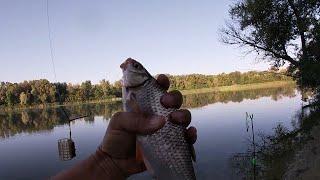 Тарань Пошла Ловля крупной плотвы на реке Осенняя рыбалка Рыбалка на тарань На что ловить тарань