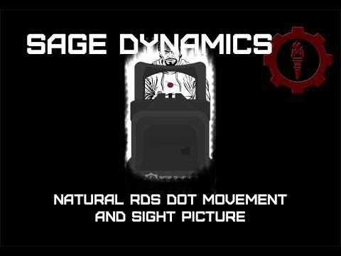 Natural RDS Dot Movement and Sight Picture