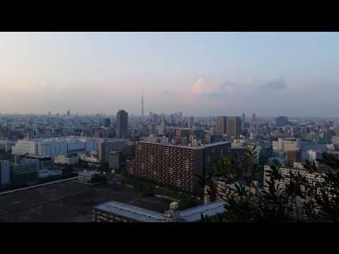 Scenic View of Tokyo from Toyosu City Towers 30th Floor - Japan Trip May 2017