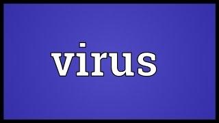 Virus Meaning