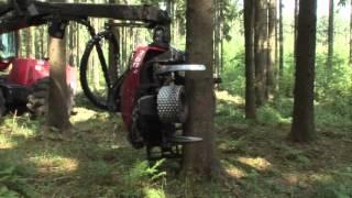 Harvester - moderner Holzernter im Einsatz
