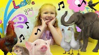 Угадай животное по звуку ЧЕЛЛЕНДЖ   Animals Challenge