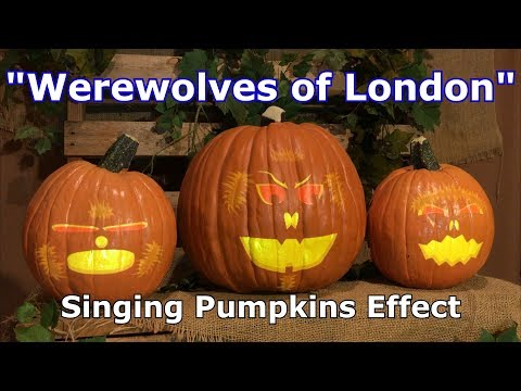 Werewolves of London - Singing Pumpkins Effect Animation