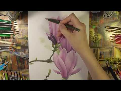 Colored pencils drawing -  flowers
