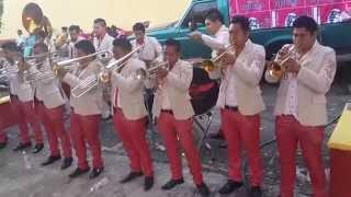 Popurri de Mambos Banda Reyna de Huajuapan Tlaltetelco 2014