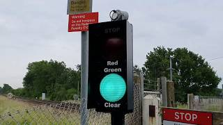 *Schweizer Electronic Vamos* Medhurst Row (User Worked) Level Crossing, Kent