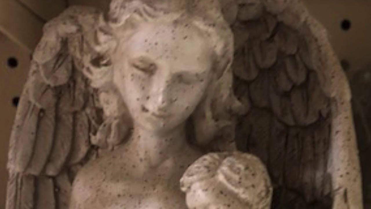 HILLCREST GARDEN TV EPISODE 13 ROSARYS & ANGELS - YouTube
