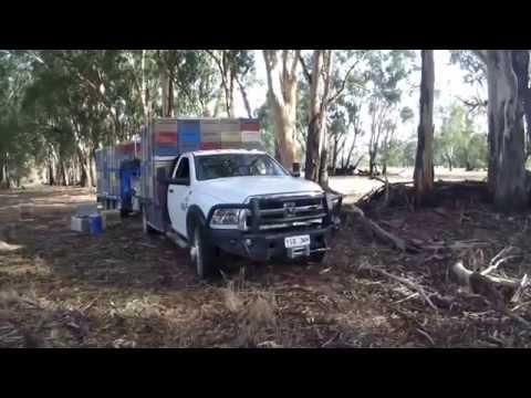 RAM 3500 Bee Truck Trailer And Ezyloader