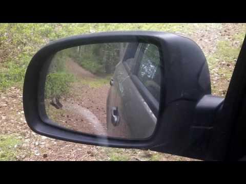 Gadfly.Слепни окружили машину.Страшно выходить из машины.Витебская область Беларусь.horseflies,cleg