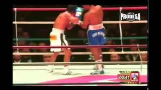 Pelea Román González vs Hiroshi Matsumoto - Prodesa