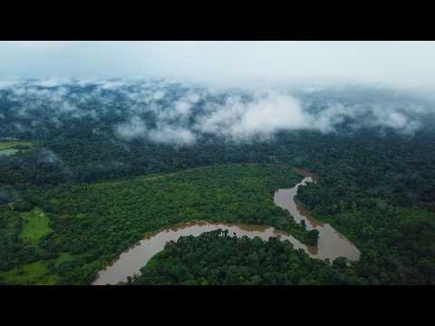 French Guiana 2018 Landscapes 4K - Dji Mavic Pro