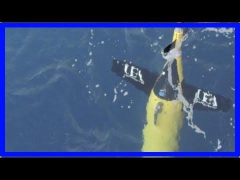 Breaking News | Growing 'dead zone' confirmed by underwater robots in the Gulf of Oman