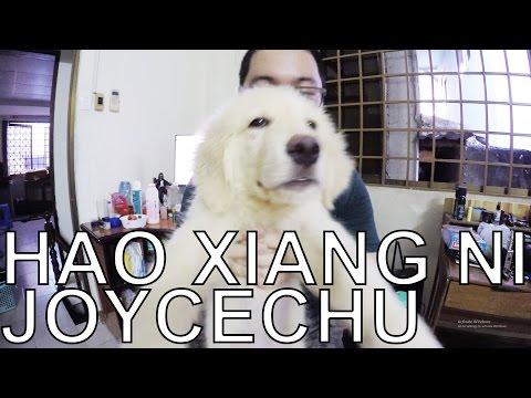 [Guitar]Hướng dẫn: Hao Xiang Ni - Joyce Chu