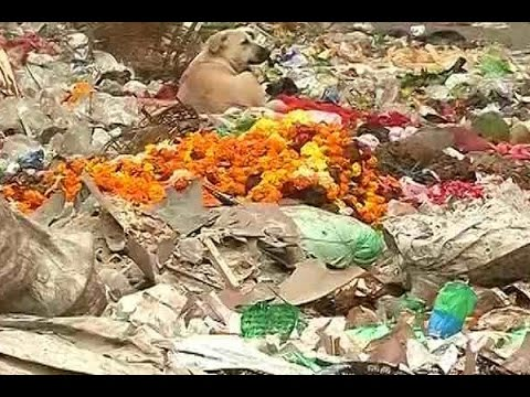 4th day of sanitation workers' strike; Garbage pile up in East Delhi