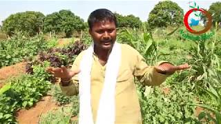Natural Farming | A Model of Integrate Agricultural Farm