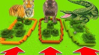 Minecraft : Do Not Choose The Wrong FARM : TIGER, HIPPO, CROCODILE(Ps3/Xbox360/PS4/XboxOne/PE/MCPE)