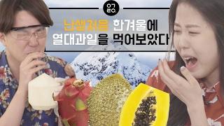 [이거레알] 난생처음 한겨울에 열대과일을 먹어보았다