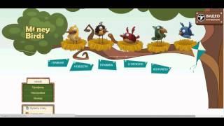 Ферма Money Birds Как заработать 45 000 рублей в день Мани Бердс заработок Отчет за 13 02 20151714