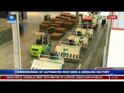 President Buhari Commissions Rice Seedling Factory In Calabar Pt.7
