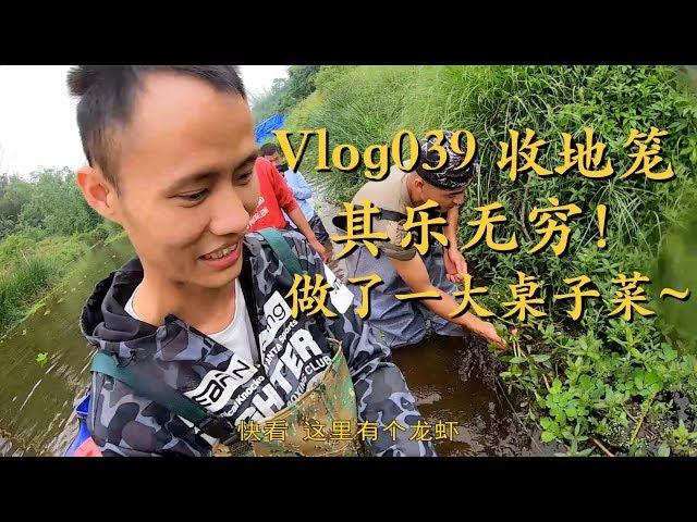 Vlog39 王刚应邀和拐哥在河边收地笼,没想到全是大货凑了满满的一大锅 Crayfish; Crab; Shrimp; Fish Traps