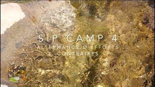SIP Camp 4