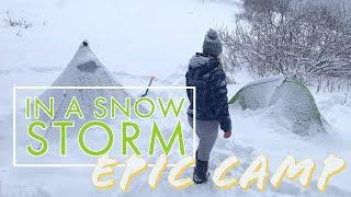 Backcountry Camping in a SΝOW STORM w/3-season tent, cozy fire and cast-iron cooking