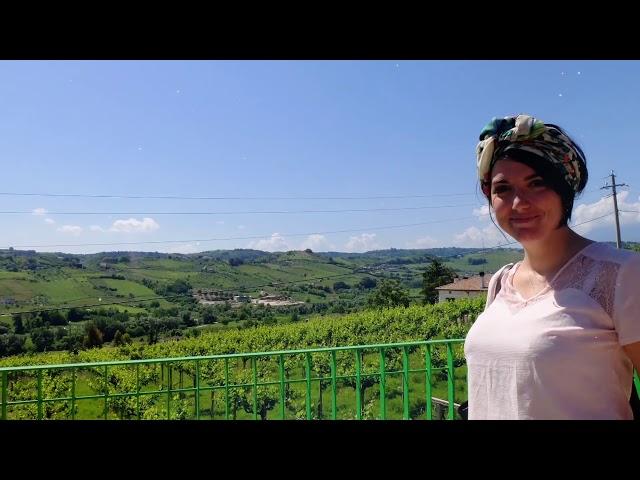 video Consorzio Tutela Vini d'Abruzzo   attività 2018