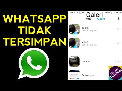 Cara Mengatasi Video Whatsapp Tidak Bisa Muncul Di Galeri Tidak Tersimpan Youtube