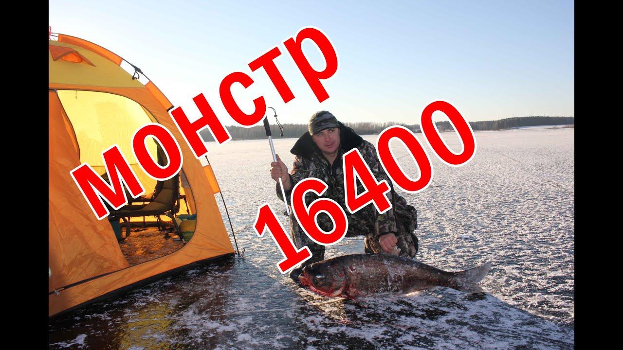 рыбалка на толстолоба в московской области
