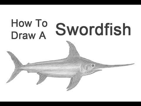 how to draw a swordfish youtube