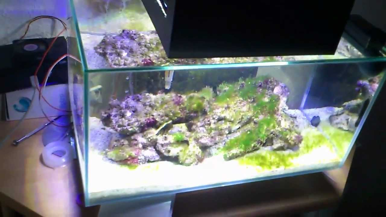 fluval nano meerwasser diy 30w led youtube. Black Bedroom Furniture Sets. Home Design Ideas