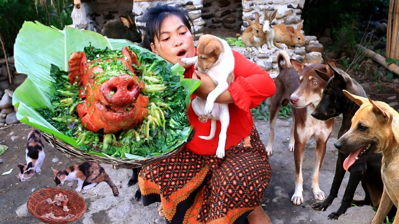 Women cut cabbage and cook it with pork head- fry pork heat for dog &cat food- cooking in forest HD