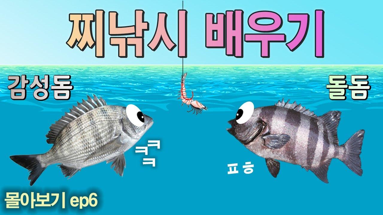 몰아보기ep6. 그림으로 배우는 돌돔, 감성돔 찌낚시 배우기