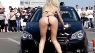 смешное видео собака ждет почту - смешное видео - Авто приколы  Девушки моют машины и танцуют