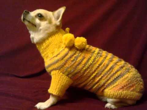 Как связать свитер для йорка своими руками фото 136