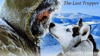 «Последний зверолов» - захватывающий приключенческий фильм для всей семьи в мире животных