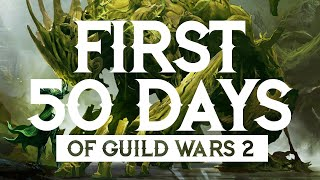 New Player Thoughts // Fiŗst 50 Days of Guild Wars 2