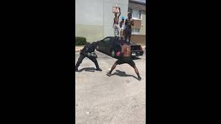 Cop Vs Pedestrian - Get Into A Friendly Boxing Match