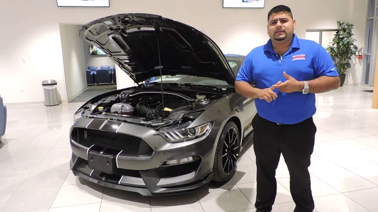 2016 ford mustang gt350 payne auto mall weslaco texas for Payne motors weslaco tx