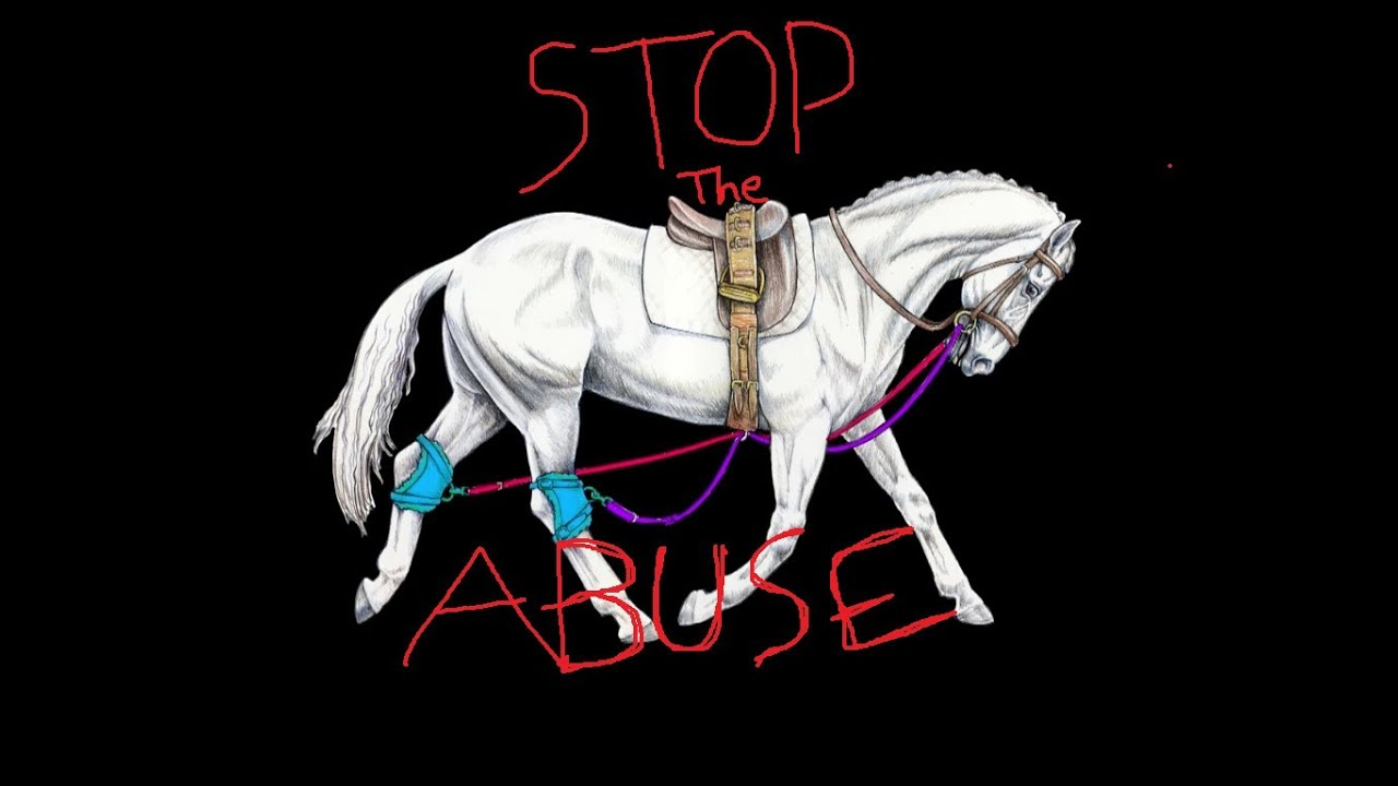 STOP THE ABUSE*contains graphic images*