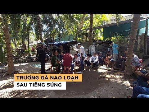 Cảnh Sát Nổ Súng, Trường Gà Online Trong Vườn Dừa Vỡ Trận