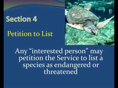 endangered species act and interagency consultation