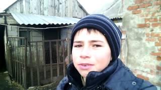 Как сделать клетку для кроликов (для самца)Жизнь в деревне!!!