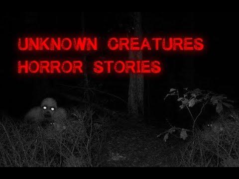 3 Disturbing True Unknown Creature Stories