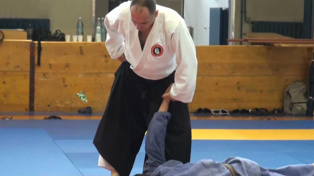 Aikido u Sloveniji: Medjunarodni seminar Ptuj 2012, vodio je Bratislav Stajic