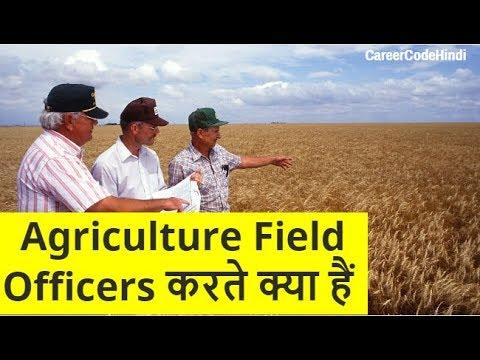IBPS Agriculture Field Officer ki job profile, career growth aur salary jaaniye