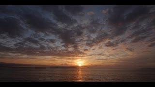 Ross Breen // Monet [Official Video]